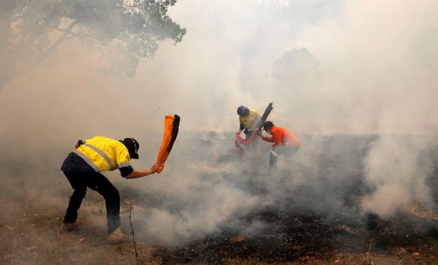 Незатухающие лесные пожары в Австралии: пожарные молятся о сильном дожде