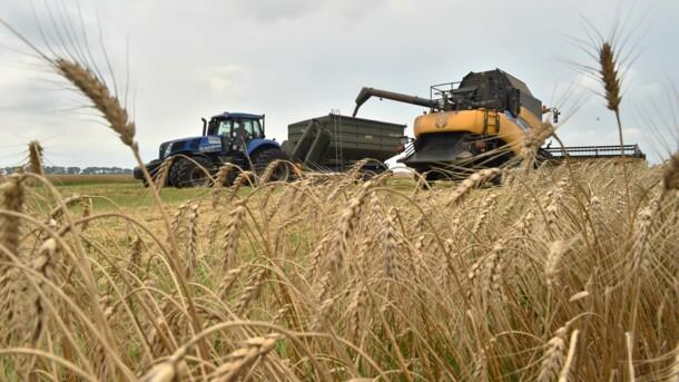 Летние тренды на рынке труда в Украине: ищут молодежь и аграриев, фото-1