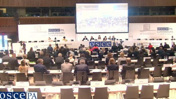 Заседание комитета по политическим вопросам и безопасности  ПА ОБСЕ 7 июля 2019 года. Скриншот видео: OSCE Parliamentary Assembly / YouTube