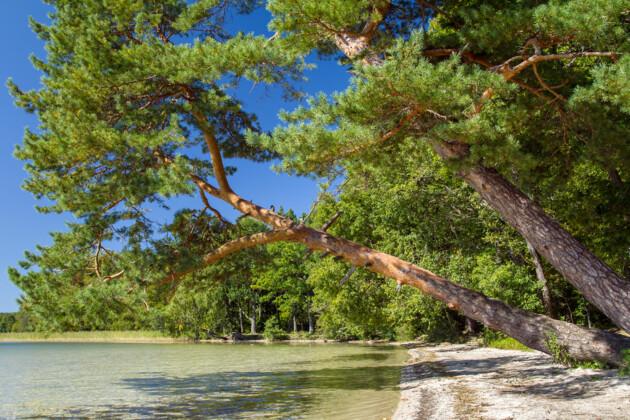 Озеро Свитязь, Шацкий природный парк на Волыни