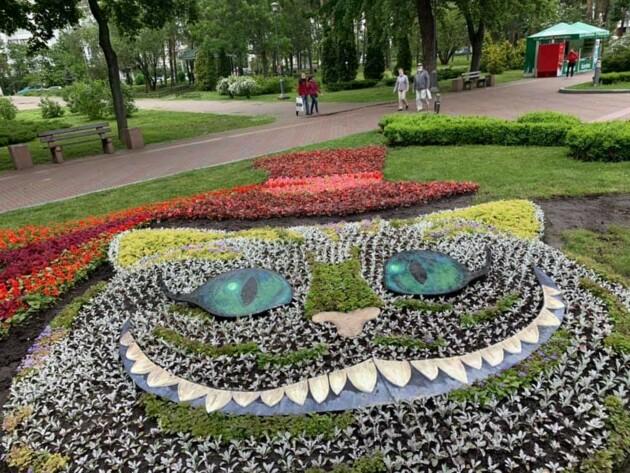 Фото: КП СЗН Днепровского района