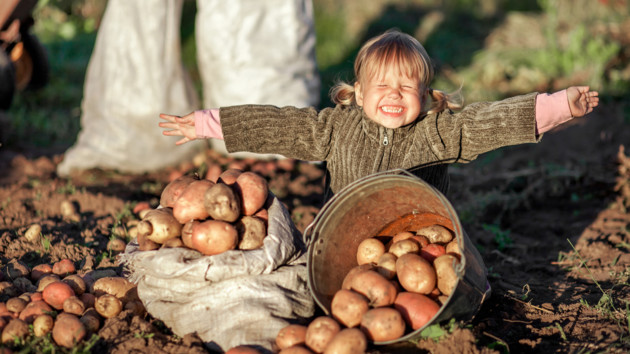 В Украине обвалились цены на овощи, но скоро все изменится