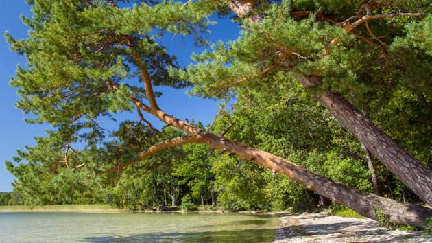 Туристический бум на волынских озерах: власти ввели ограничения