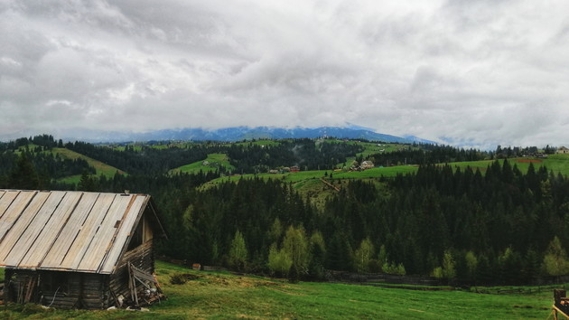 Туристы хлынули в украинские Карпаты: названа причина