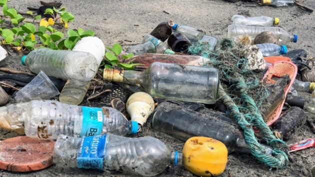 Пластик добрался до Арктики - ученые