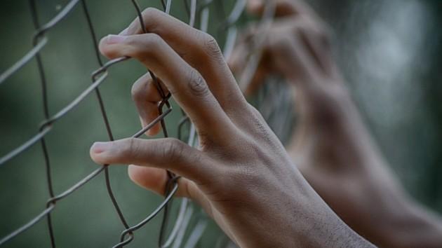 Сбежавшие из колонии во Львовской области преступники пойманы: ранен полицейский
