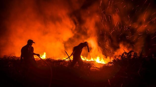 Грецию охватили лесные пожары, огонь подходит к столице: видео