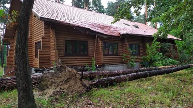 Поваленные деревья и дома без крыш: что натворила непогода в Киевской области
