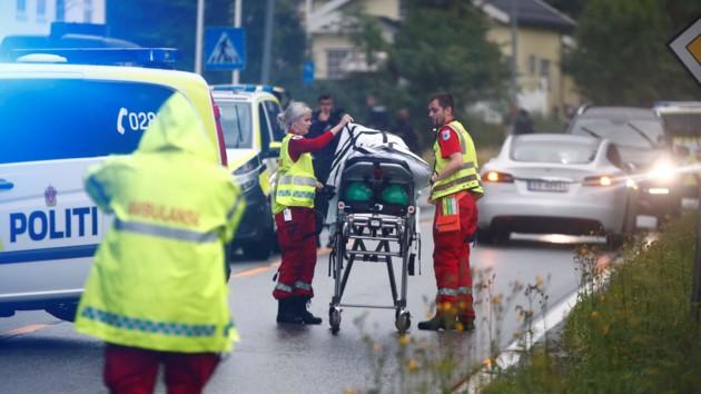 Стрельба в мечети в Осло: полиция нашла мертвой родственницу стрелка