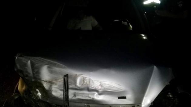 В Винницкой области столкнулись микроавтобус и легковушка: пострадали восемь человек