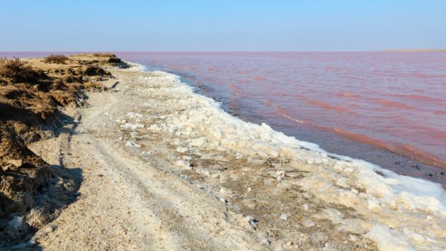 Розовое озеро в Украине: где находится и лечебные свойства