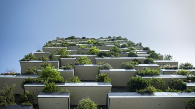 Как зелень Берлин спасла: деревья берегут столицу Германии от наводнений