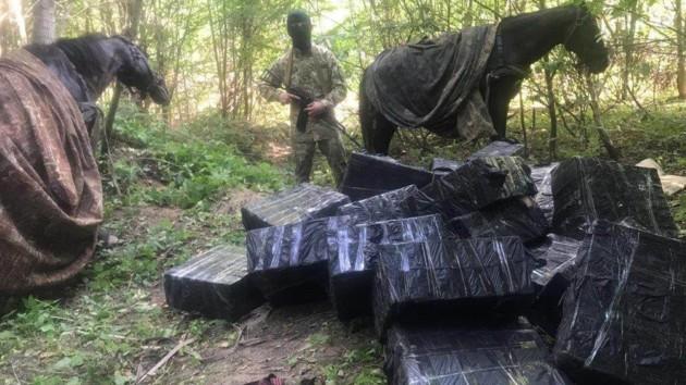 Дело на полмиллиона: на Буковине контрабандисты пытались перевезти сигареты на лошадях