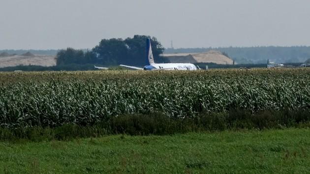 Вспаханное поле и смятая кукуруза: видео с места жесткой посадки лайнера в России