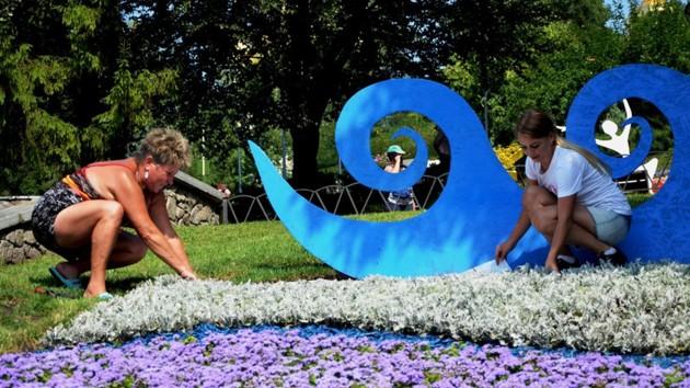 Новая выставка цветов на Певческом поле: как выглядят клумбы перед открытием