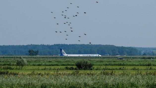 Cамолет с пассажирами аварийно севшего российского Airbus прибыл в оккупированный Крым