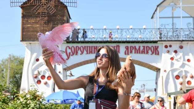 Сорочинская ярмарка 2019: куда пойти и что интересного посмотреть