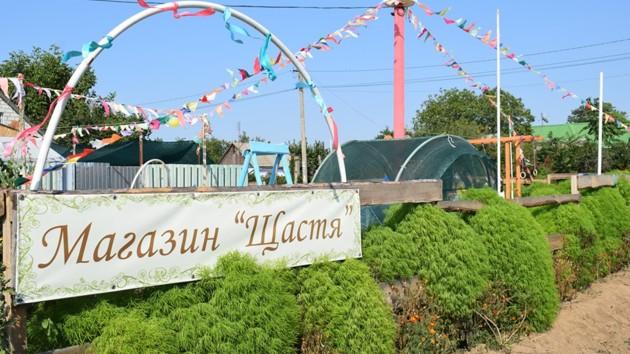 Участники АТО из Николаева, воспользовавшись помощью ОГА, открыли центр семейного отдыха