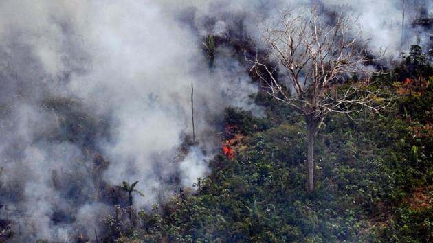 Власти Бразилии направят военных на борьбу с пожарами в Амазонии