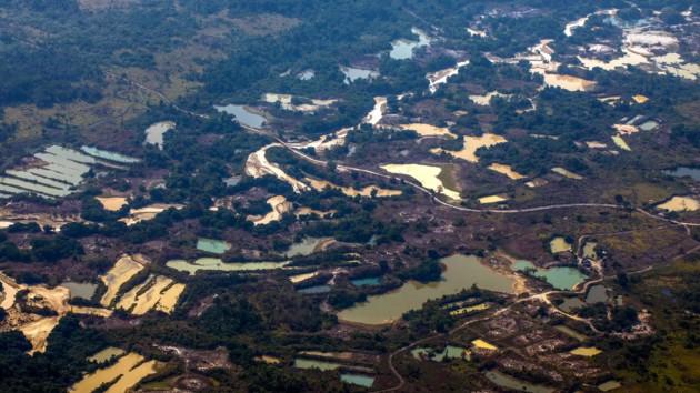 США и Бразилия выделят 100 млн долларов для сохранения лесов Амазонии
