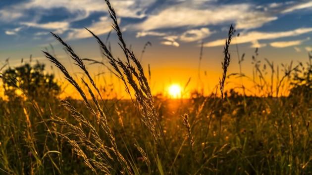 В Украину ненадолго вернется потепление: синоптик порадовала прогнозом погоды