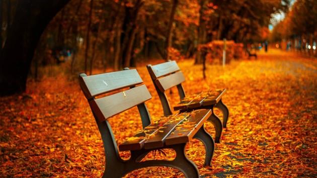 Выходные дни и праздники в октябре 2019 года в Украине
