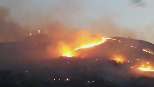 В Колумбии лесной пожар едва не уничтожил известную статую Христа
