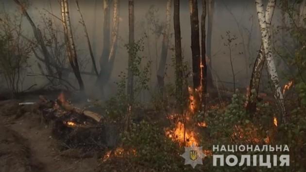 """Пожар в Чернобыльской зоне устроила """"мстительница"""": подробности поджога"""