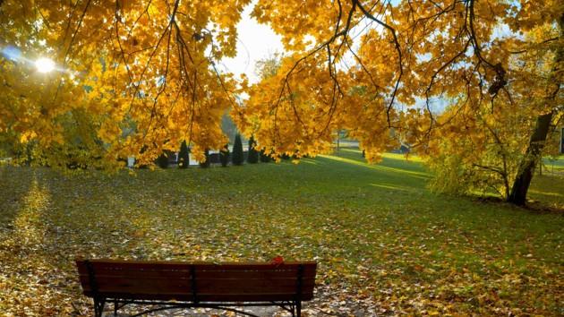 20 сентября: какой сегодня праздник, приметы дня и что нельзя делать