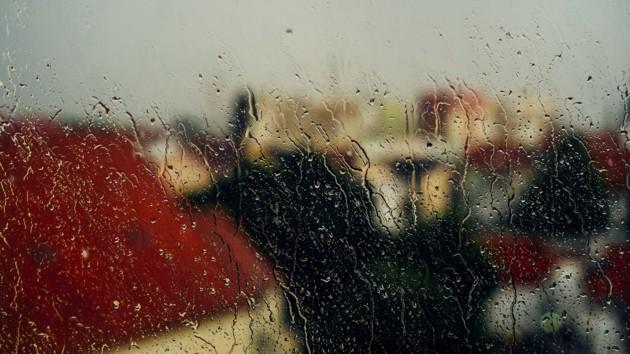 Синоптики рассказали, когда в охваченной пожарами Киевской области пойдут дожди