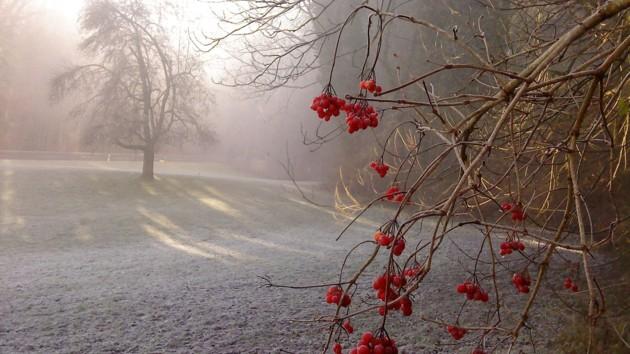 Дощі і заморозки: погода до наступного тижня сильно зіпсується, фото-1