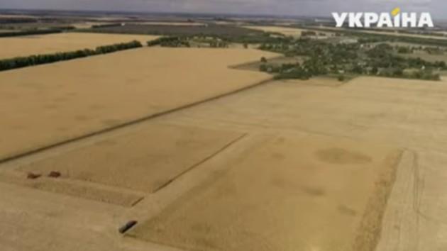Законопроект о рынке земли: чего боятся малые фермеры