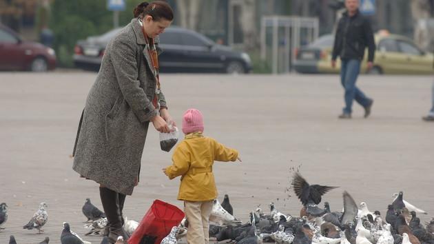 Настоящее бабье лето: прогноз погоды в Украине на неделю