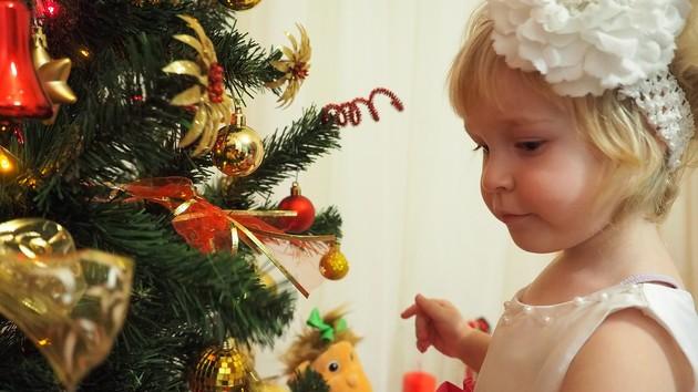 Новий рік і Різдво: скільки коштує купити і нарядити святкову ялинку, фото-1