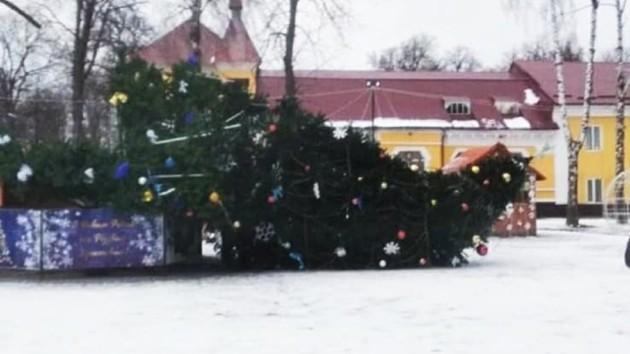 В Дунаевцах рухнула новогодняя елка
