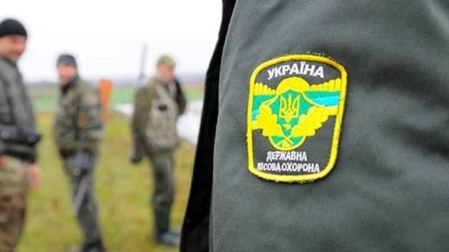 В лесах и парках Киева запретили шуметь