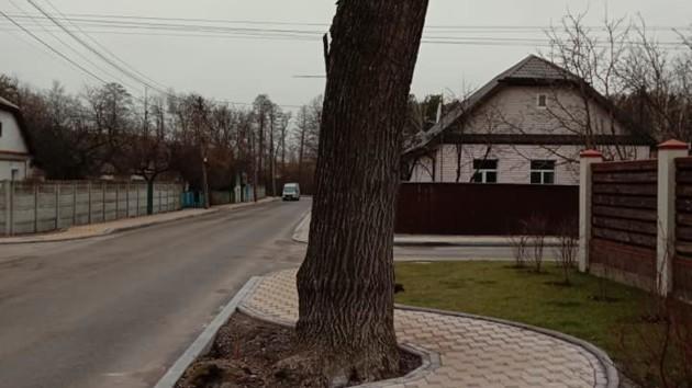 Фото: Андрей Ступак для ДВРЗ