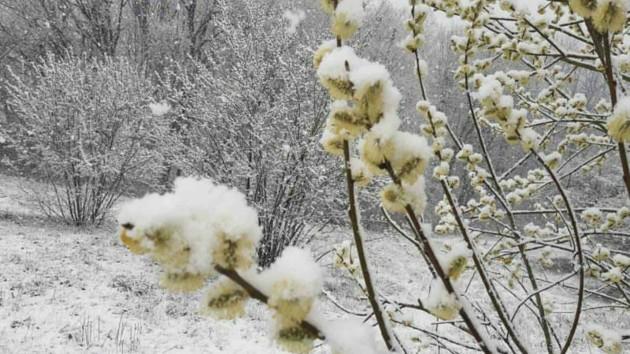Синоптики рассказали, когда в Киеве потеплеет до +14 градусов после снегопада
