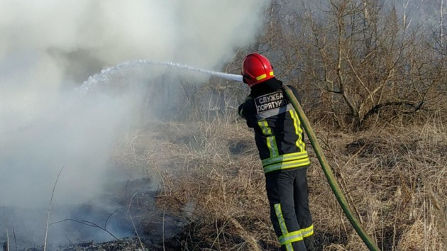 Штрафы за поджог сухостоя в Украине увеличат в 70 раз