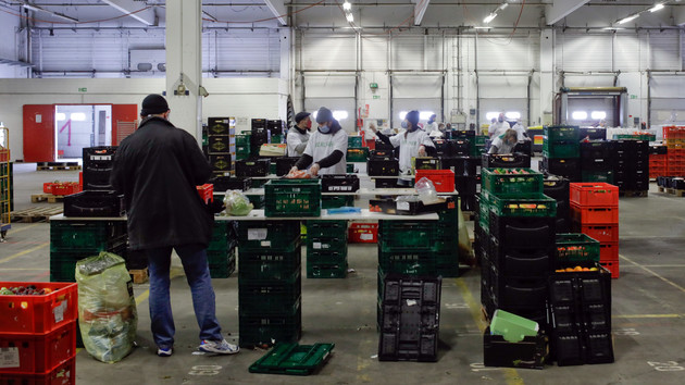 Из-за коронавируса в мире дешевеет еда: в ООН рассказали о ситуации