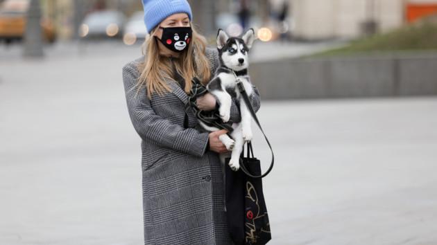 """Где купить маски: сайт """"Сегодня"""" проверил аптеки Киева"""