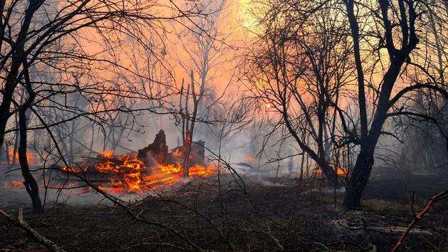Пожар в Чернобыльской зоне тушат уже 13 дней: что известно (фото и видео)
