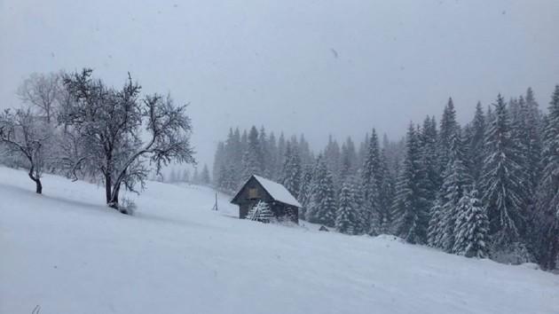 Популярный курорт на Закарпатье засыпало снегом (фото, видео)
