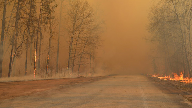 Дым из Чернобыля не мог попасть в Киев – директор Укргидрометцентра