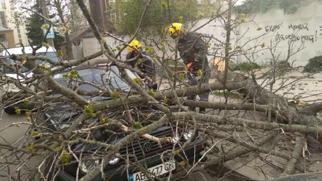 Буря в Киеве ломала деревья и срывала крыши: фото последствий стихии