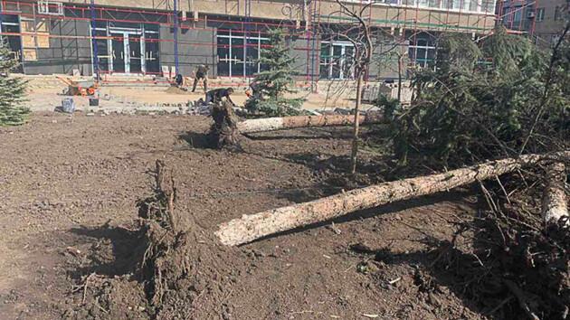 Вырванные деревья и оборванные провода: что натворила непогода в Славянске (фото)
