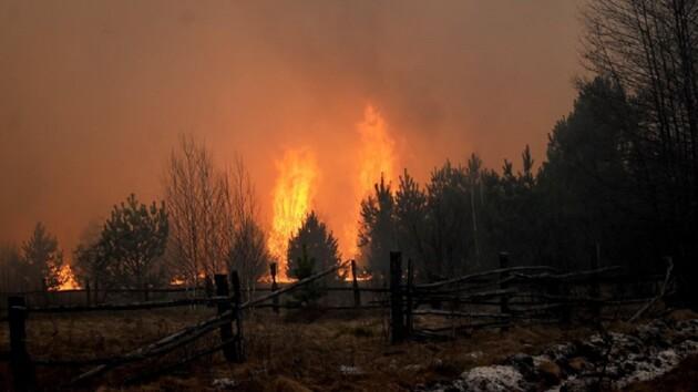 Апокалипсис в Житомирской области: ураган раздувал огонь, горели целые  села (фото, видео)