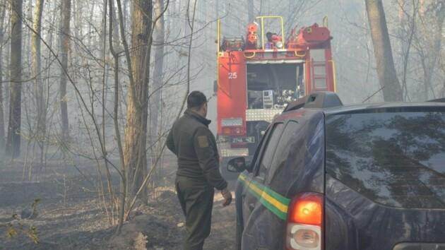 Едкий дым, пылающие поля и лес: как на Волыни укрощают пожары (фото и видео)
