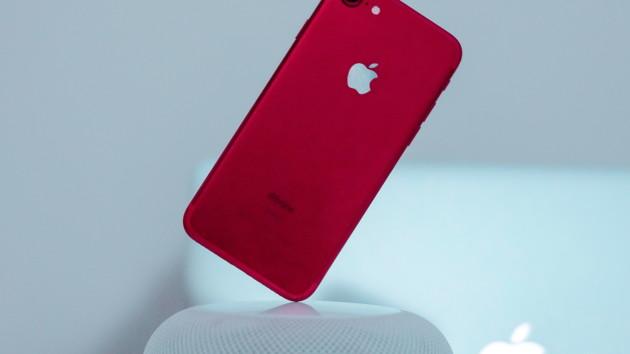 iPhone 8 оказался подходящим донором для iPhone SE