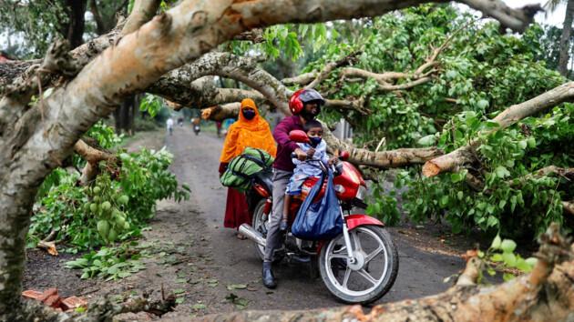 """Вырванные деревья и 84 погибших: фото и видео суперциклона """"Амфан"""" в Индии и Бангладеш"""